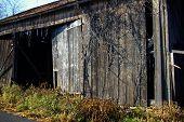 stock photo of mennonite  - this photo can describe how pennsylvania  - JPG
