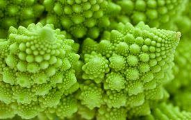 stock photo of romanesco  - Fresh green cabbage romanesco - JPG
