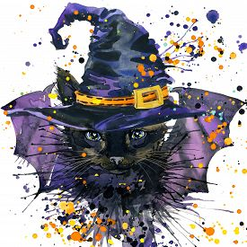 image of halloween  - Halloween cat and a witch hat - JPG