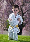 picture of jiujitsu  - Young boy practicing martial arts outside in spring - JPG