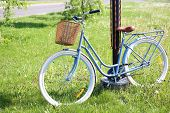 Bicycle with wicker basket on green grass in park poster