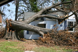 picture of katrina  - hurricane katrina close call - JPG
