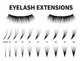 Eyelash Extensions. Curling Extension Volume Eyelashes, Tweezer Tool Guide Fake Lash. Artificial Las poster