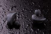 Waterproof Headphones. Wireless Headphones. Intra-channel Bluetooth Headphones On A Dark Background  poster