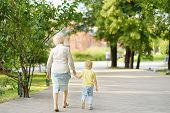 Beautiful Granny And Her Little Grandchild Walking Together In Park. Grandma And Grandson poster