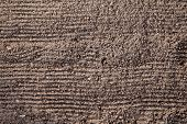 Preparation Of Land Before Planting. The Texture Of The Ground With Horizontal Grooves From The Rake poster
