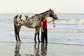 picture of appaloosa  - woman on beach with appaloosa horse - JPG