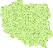 image of polonia  - Map of Poland  - JPG