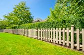 stock photo of wooden fence  - wooden fence with green lawn and trees - JPG