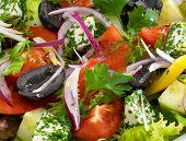 picture of greeks  - Healthy vegetarian greek salad with tomatoes - JPG