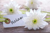 picture of relaxing  - Tag with Relax on Wooden Background with White Flowers - JPG