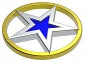 Постер, плакат: Хром звезда в Золотой круг