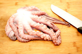 pic of devilfish  - Slicing Raw Octopus for a Gourmet Dinner - JPG