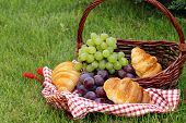 pic of croissant  - picnic on green grass with grapes - JPG