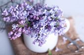 pic of hazy  - Bouquet of purple lilac spring flowers with an open book and vintage hazy editing - JPG