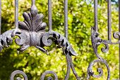 image of wrought iron  - details of structure and ornaments of wrought iron fence and gate - JPG