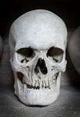picture of catacombs  - One human skull inside a Christian catacomb - JPG