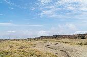 stock photo of plateau  - Landscape of plateau in Hallasan moutain view from Yeongsil trail in Hallasan mountain National Park in Jeju Island Korea - JPG