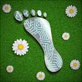 picture of footprint  - Footprint with a chip on the surface of the grass - JPG