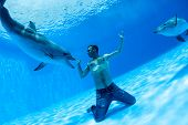 picture of friendship belt  - Men and two dolphin fooling around on the bottom of the dolphinarium - JPG