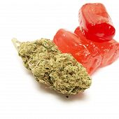 picture of weed  - Marijuana Bud and Weed Candy Containing THC - JPG