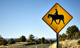 stock photo of juniper-tree  - Horse and Rider Crossing road sign on side of highway with juniper trees - JPG