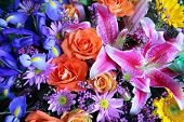 picture of asiatic lily  - Vibrant bouquet of beautiful exotic flowers - JPG
