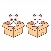Cute White Kitty In Cardboard Box. Funny Cartoon Cat Sitting In Box, Isolated Vector Clip Art Illust poster