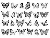 Butterfly Collection. Beautiful Nature Flying Insect Exotic Butterflies With Funny Wings Vector Illu poster
