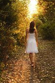 stock photo of alice wonderland  - Young girl with white dress walking onto a mysterious path in the forest - JPG