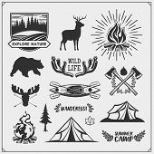 Camping Club Emblems And Design Elements With Forest Animals And Equipment. Forest Camping, Outdoor  poster