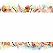 Watercolor Banner With Shells And Blue Water. Hand Painted Golden Sea Shells Border Isolated On Whit poster