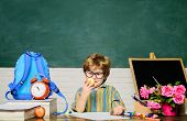 School Lunch. Schoolboy At Lunch Time. Funny Little Boy In Glasses Sits At Desk In Classroom. Child  poster