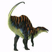 Ouranosaurus Dinosaur Tail 3d Illustration - Ouranosaurus Was A Herbivorous Hadrosaur Dinosaur That  poster