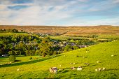 Sheep In Field Above Stanhope On Sunny Day, A Small Market Town In County Durham, England, Situated  poster