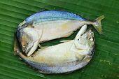 picture of chub  - Chub mackerel on a banana leaf  - JPG