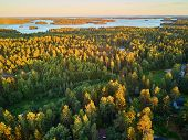 Scenic Top Down View Of Mixed Forest In Finnish Countryside, At Sunset. Nature Of Finland poster