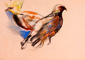 stock photo of peahen  - Oldgrunge original pastel and hand drawn working sketch of peacock and peahen - JPG