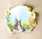 Conceptual spring theme with gappy paper and spring meadow with rabbit, butterflies and blooming cha