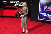 LOS ANGELES - MAR 6: Shantel VanSanten at the premiere of DreamWorks Pictures' 'Need For Speed' at T