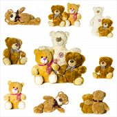 picture of teddy  - beutiful collage of different toy teddy bears - JPG