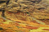 Autumn landscape in Highlands, Scotland, United Kingdom