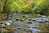 image of gatlinburg  - Beautiful fall colors early in the morning at a river in the mountains.