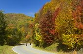 Motorcyclists On Cherohala Skyway In Autumn