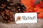 foto of relaxing  - An Autumnal Label with the Word Relax on it Fall Background - JPG