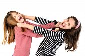picture of pulling hair  - Young girls fighting pulling hairs isolated in white - JPG