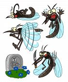 foto of gnats  - Several illustrations with cartoon mosquito for theme parasitic insect - JPG