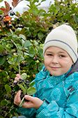 picture of aronia  - A boy with a sprig of Aronia - JPG