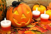 pic of wart  - Halloween Jack o Lantern scene with candy and decor - JPG