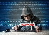 image of stealing  - Young geek hacker stealing password on futuristic background - JPG